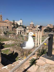 Foro romano dalla rampa imperiale