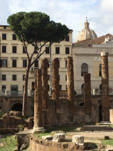 Giulio Cesare, gli scavi di Torre Argentina
