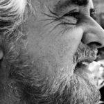 Beppe Grillo, Beppe Grillo