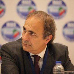 Ricardo Merlo, Ricardo Merlo