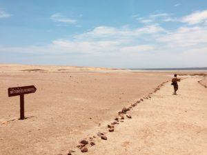 Deserto, Deserto della Riserva nazionale di Paracas