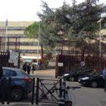 Violante, Ingresso del Tribunale di Roma