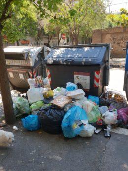 Salva Roma, Rifiuti in una strada di Roma