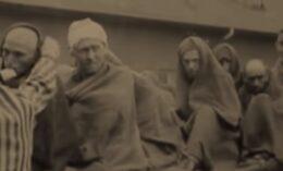 Shoah, Fila di deportati nel campo di sterminio di Dachau