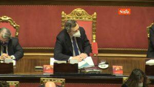 Draghi sgomita, Mario Draghi al Senato