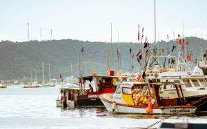 agroalimentare, pescherecci in porto